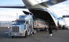 Преимущества грузоперевозок воздушным транспортом